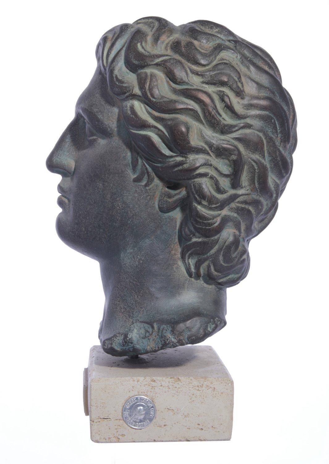 Alexander the Great large plaster bust