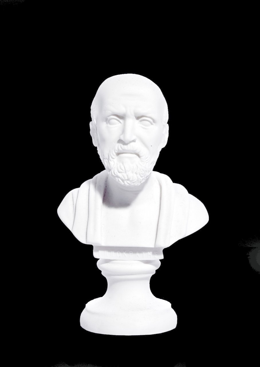 Hippocrates greek alabaster bust statue