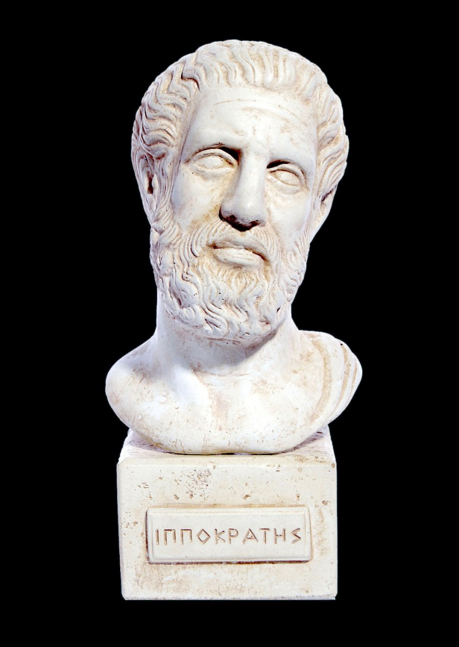 Hippocrates (Ippokrates) greek plaster bust statue