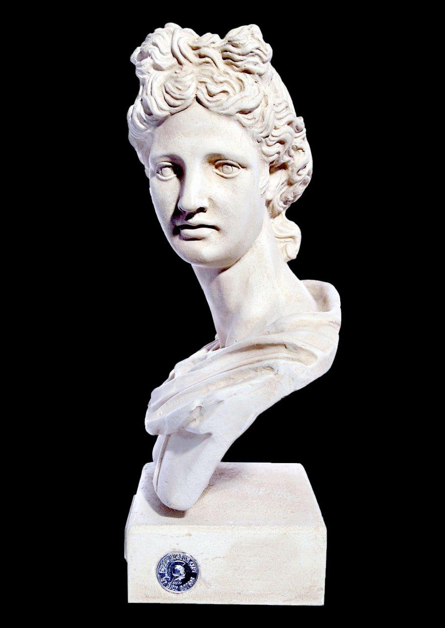 Apollo greek plaster roman bust statue