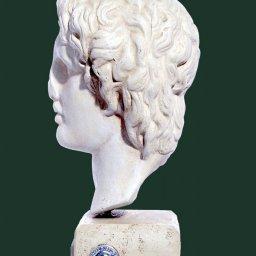 Alexander the Great greek plaster bust  2
