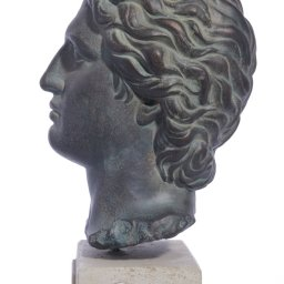 Alexander the Great large plaster bust  2