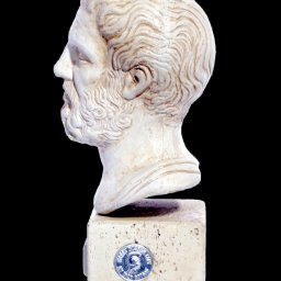 Hippocrates (Ippokrates) greek plaster bust statue  2