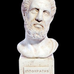 Hippocrates (Ippokrates) greek plaster bust statue  1